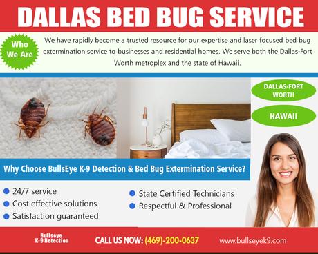 Bed Bug Exterminator On Alternion