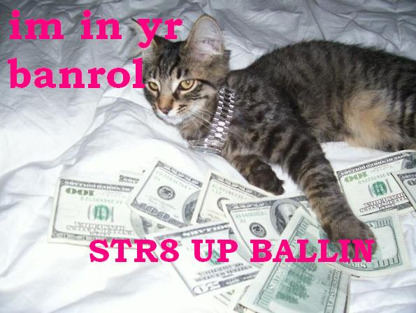 bankrollcat.jpg