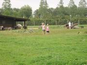 Lalandia Aug.2007 006.jpg