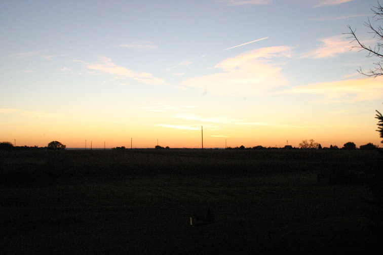 '07 Dakota Farm Pheasant Opener 054.JPG