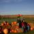 '07 Dakota Farm Pheasant Opener 120.JPG