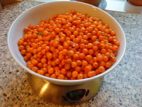 820 g havtornbær