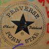 Perverse Porn Star