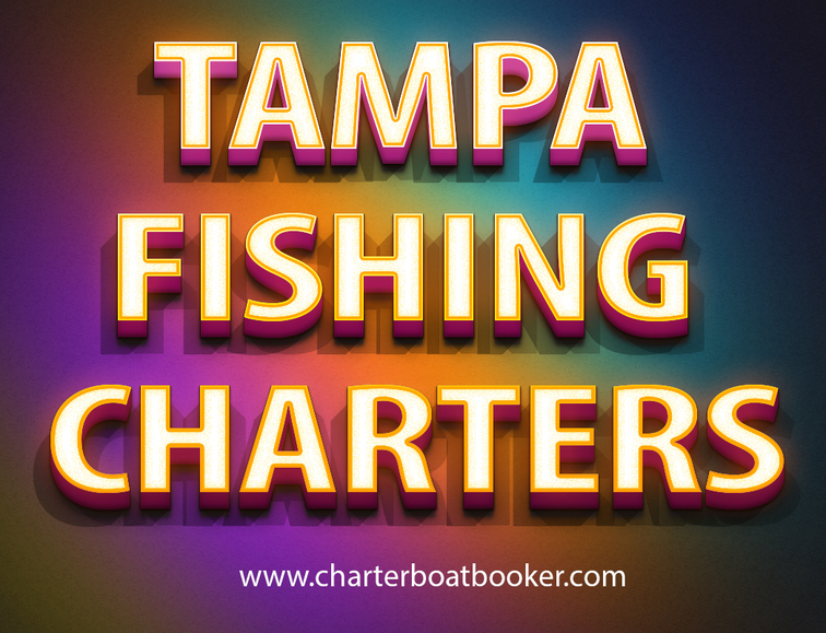 Tampa Charter Fishing